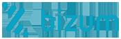 10y20-logo-bizum-02