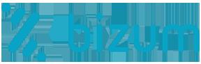 10y20-logo-bizum